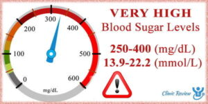 Supports Healthy Blood Sugar Levels