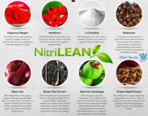 Nitri Lean Ingredients