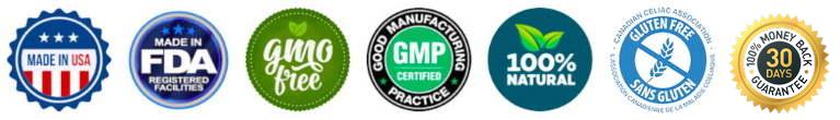 GMP FDA